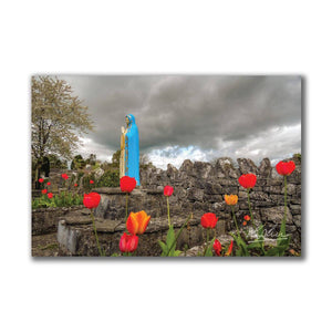 Tulips around Virgin Mary, Ireland, Catholic Art Poster