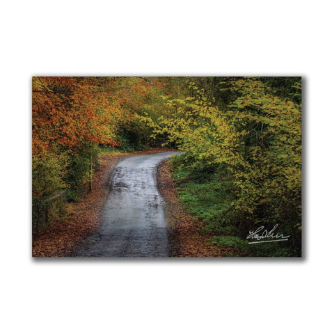 Image of Irish Country Road in Autumn Poster Print Poster Moods of Ireland