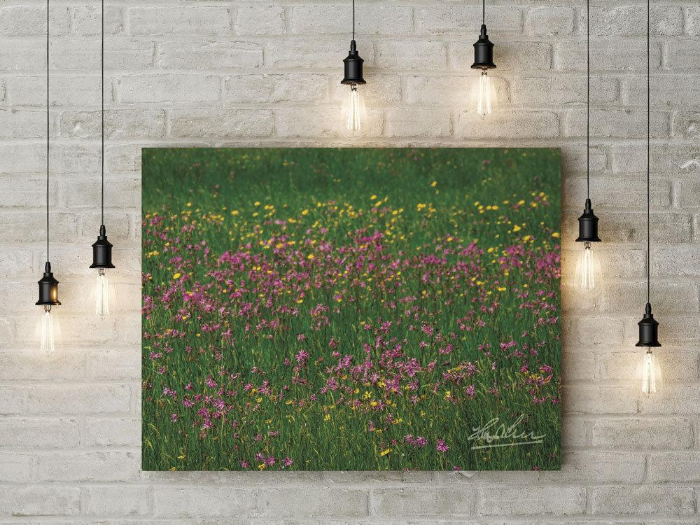 Meadow of Irish Wildflowers Poster Print