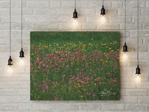 Image of Meadow of Irish Wildflowers Poster Print Poster Moods of Ireland
