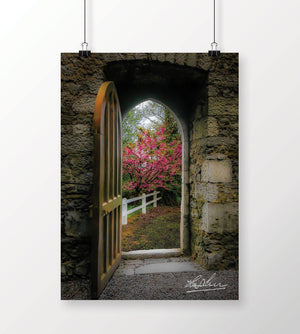 Posters - Into Irish Spring, Enchanted Art Poster