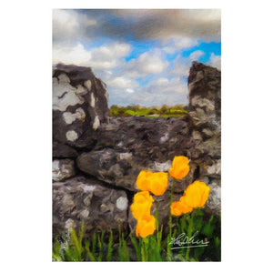 County GalwayTulips Nature Poster Poster Moods of Ireland