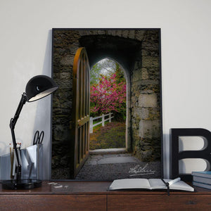 Into Irish Spring, Enchanted Art Poster