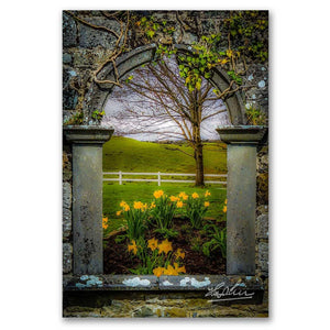 Irish Spring in County Clare, Ireland, Poster Print