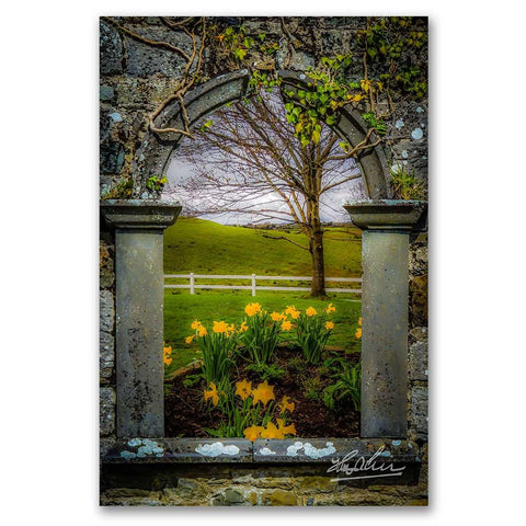 Image of Irish Spring in County Clare, Ireland, Poster Print Poster Moods of Ireland