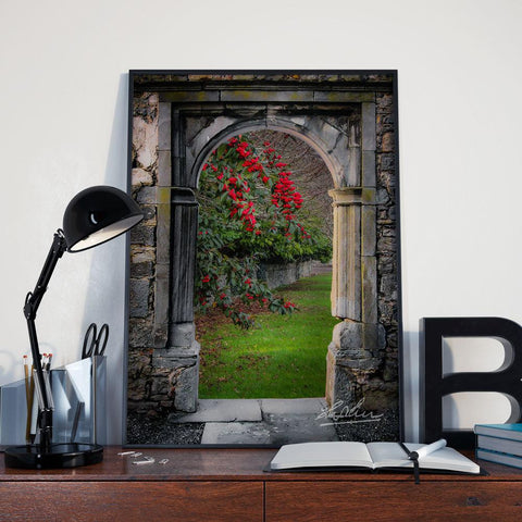Image of Blooming Bush in County Clare, Ireland, Mindfulness Wall Art Poster Moods of Ireland