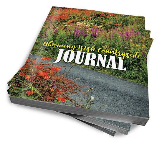 Blooming Irish Countryside Journal, Diary, Notebook