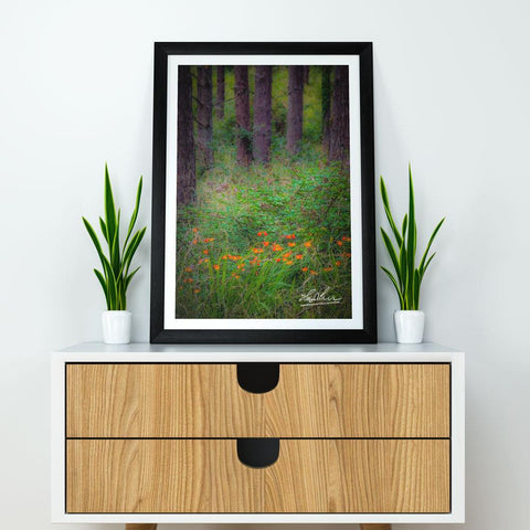 Image of Print - Portumna Forest Park Paradise in County Galway - James A. Truett - Moods of Ireland - Irish Art