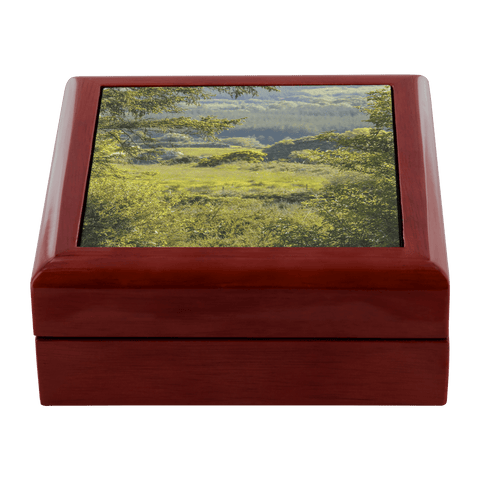 Jewelry Box - 40 Shades of Green, County Clare, Ireland - James A. Truett - Moods of Ireland - Irish Art