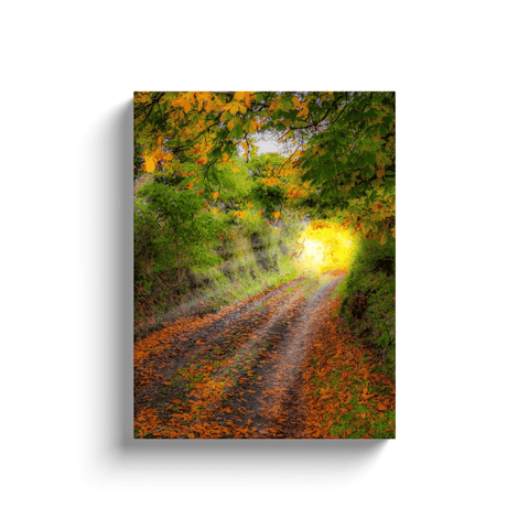 Image of Canvas Wrap - Path to Cullinan Cottage, County Clare Canvas Wrap Moods of Ireland 12x16 inch