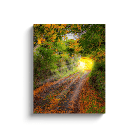 Canvas Wrap - Path to Cullinan Cottage, County Clare Canvas Wrap Moods of Ireland 16x20 inch