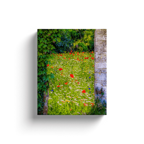 Canvas Wrap - Magical Irish Wildflower Meadow in County Clare Canvas Wrap Moods of Ireland 8x10 inch