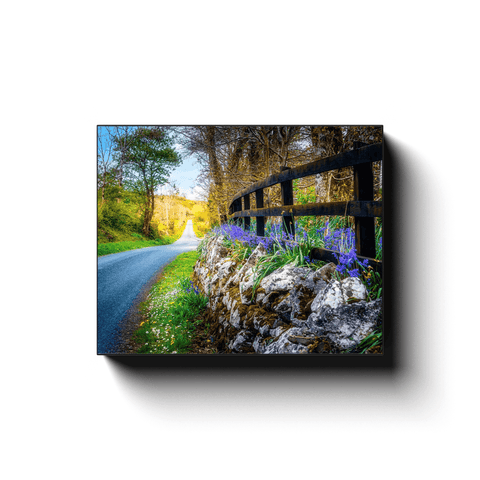 Canvas Wrap - Bluebell-lined County Clare Road - James A. Truett - Moods of Ireland - Irish Art