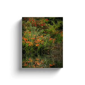 Canvas Wrap - Reflections of Summer in the Irish Countryside Canvas Wrap Moods of Ireland 8x10 inch