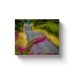 Canvas Wraps - Fairy Thimbles on the Road to Lissycasey, County Clare Canvas Wrap Moods of Ireland Image Wrap 8x10 inch