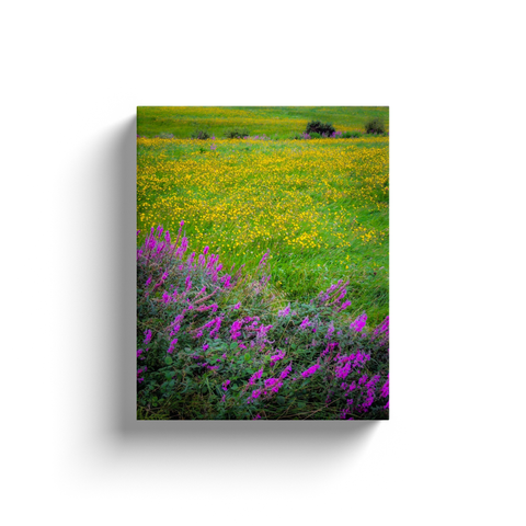 Image of Canvas Wrap - Irish Countryside Summer Wildflower Meadow Canvas Wrap Moods of Ireland 8x10 inch