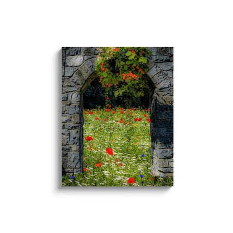 Image of Canvas Wrap - Portal to Secret Irish Wildflower Garden, County Clare - James A. Truett - Moods of Ireland - Irish Art