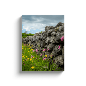 Canvas Wraps - Kildysart Buttercups & Ragged Robin against Stone Wall, County Clare, Ireland Canvas Wrap Moods of Ireland 12x16 inch