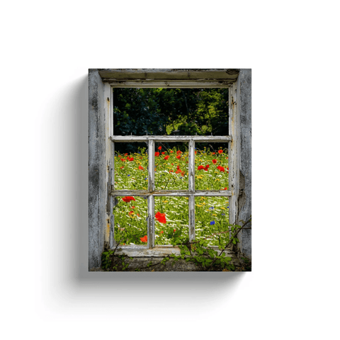 Image of Canvas Wrap - Irish Wildflower Meadow framed by Weathered Window Canvas Wrap Moods of Ireland 8x10 inch