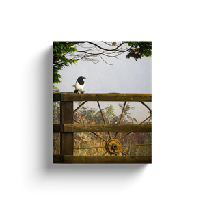 Canvas Wrap - Magpie in the Irish Mist, County Clare - James A. Truett - Moods of Ireland - Irish Art