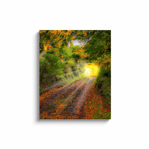Image of Canvas Wrap - Path to Cullinan Cottage, County Clare Canvas Wrap Moods of Ireland 24x30 inch
