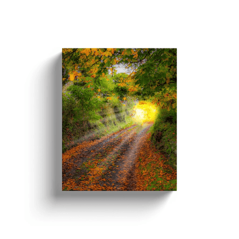 Image of Canvas Wrap - Path to Cullinan Cottage, County Clare Canvas Wrap Moods of Ireland 8x10 inch