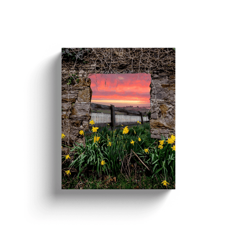Image of Canvas Wrap - Daffodil Sunrise in the Irish Countryside - James A. Truett - Moods of Ireland - Irish Art