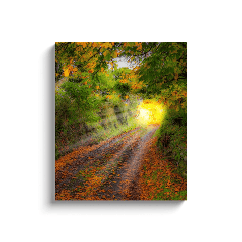 Image of Canvas Wrap - Path to Cullinan Cottage, County Clare Canvas Wrap Moods of Ireland 20x24 inch