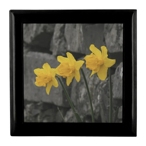 Jewelry Box - Irish Daffodils Jewelry Box teelaunch Ebony Black