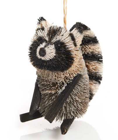 Curious Raccoon Buri Ornament