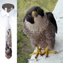 Load image into Gallery viewer, Peregrines Parenting - Necktie