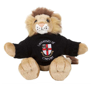 Leo Lion with Personalised Sweater