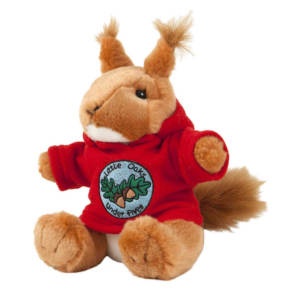 Rufus Squirrel with Personalised Hoody