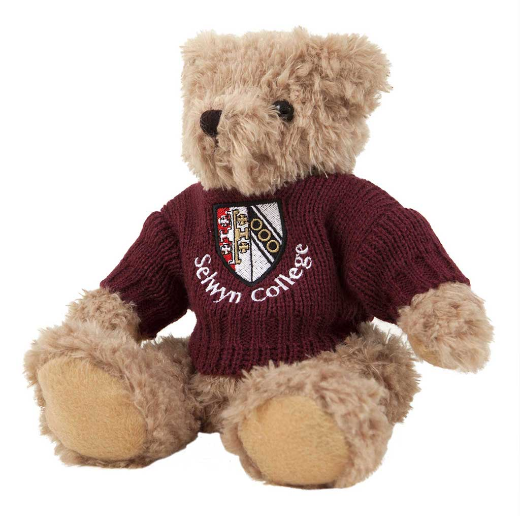 Theo Bear with Personalised Sweater
