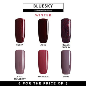 Bluesky Winter Gel Polish Set
