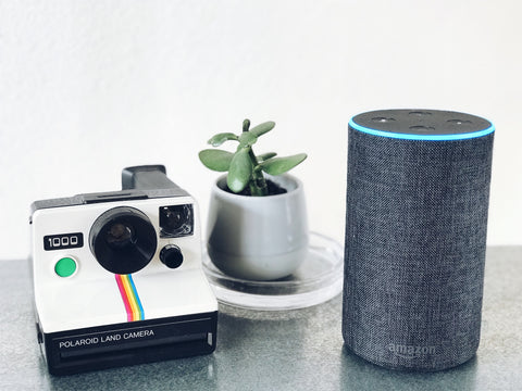 Amazon Echo Speaker beside Polaroid camera and succulent plant