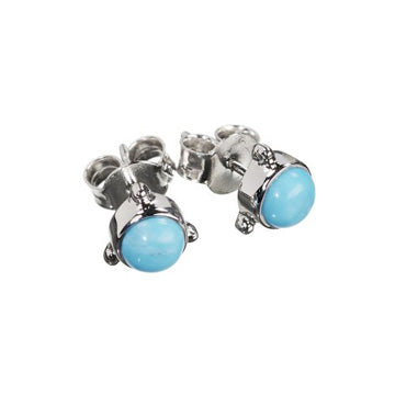 Darling Turquoise Silver Earrings