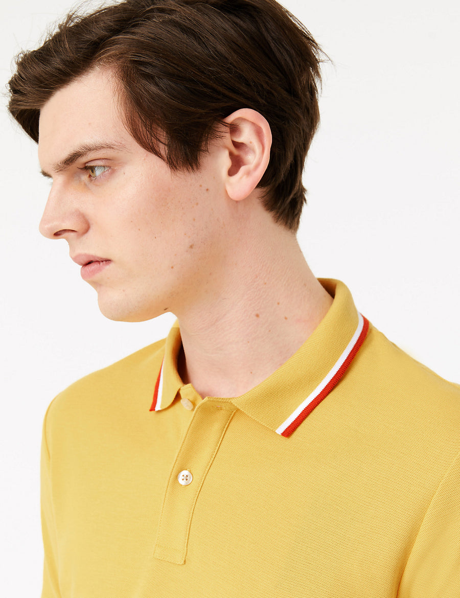 Pure Cotton Wide Tipped Polo Shirt