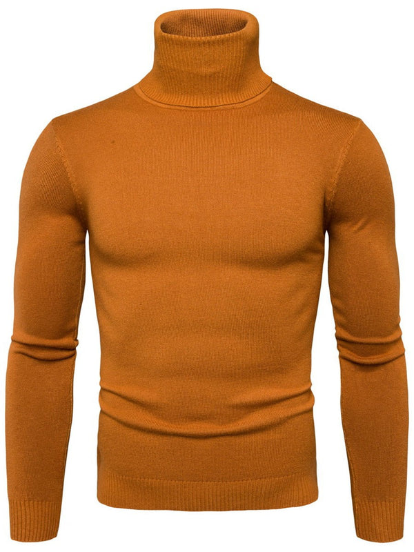 Plain Turtleneck Standard Slim Winter Sweater