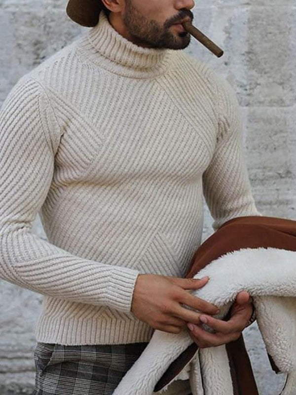 Standard Turtleneck Plain Slim Fall Sweater