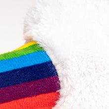 Rainbow Bendie Dog Toy