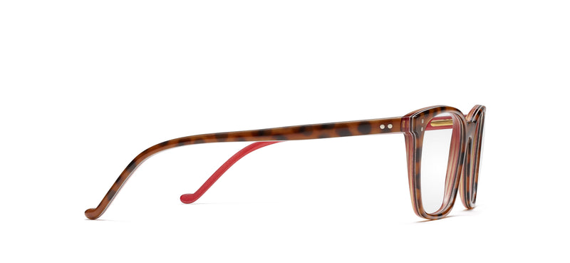 Brad Horn in spotty tortoise / red