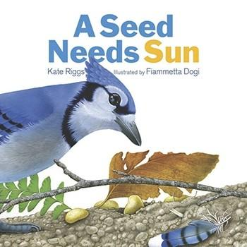 A Seed Needs Sun - The Creative Company By Kate Riggs