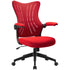 products/FurniwellOfficeDeskChairwithFlipArms_MidBackMeshComputerChairred1.jpg