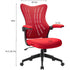 products/FurniwellOfficeDeskChairwithFlipArms_MidBackMeshComputerChairred7.jpg