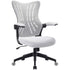 products/FurniwellOfficeDeskChairwithFlipArms_MidBackMeshComputerChairwhite1.jpg