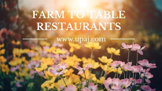 11 Fascinating Farm to Table Restaurants in the World You Need to Know About