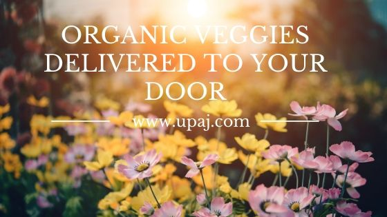 Know How to Get Organic Veggies Delivered to Your Home