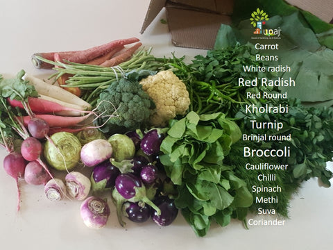 organic veggies box