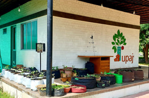 Workshop For Urban Farmer (July every Thursday 4:00 PM to 5:00 PM)